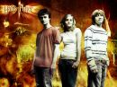 Photo de sondages-harry-potter