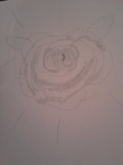 Quelque un de mes dessins.