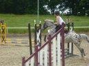 Photo de Les-chevaux-une-vie
