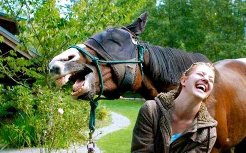 Pour parler à un cheval, il n'y a pas besoin de mots. C'est une étreinte charnelle qui alimente nos rêves...