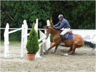 Lance ton coeur par dessus l'obstacle et ton cheval te suivra. (normalement ...)