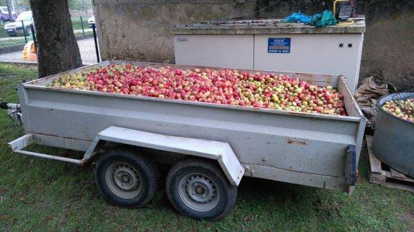 Fete de la pomme à Passy (89)