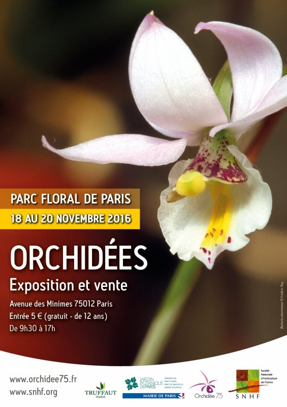 En ce moment exposition d'Orchidées au Parc Floral de Paris