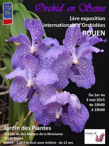 Quelques expositions d'orchidées pour le plaisir des yeux