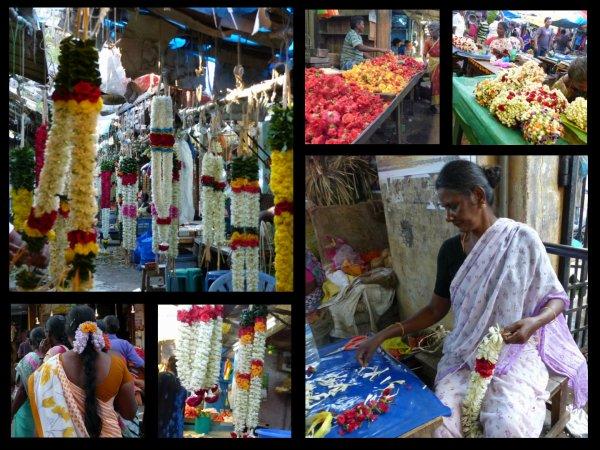 Inde : Pondichéry et son quartier Tamoul