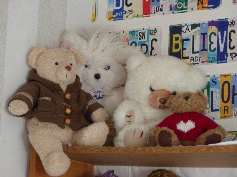 Quelques ours en plus 2