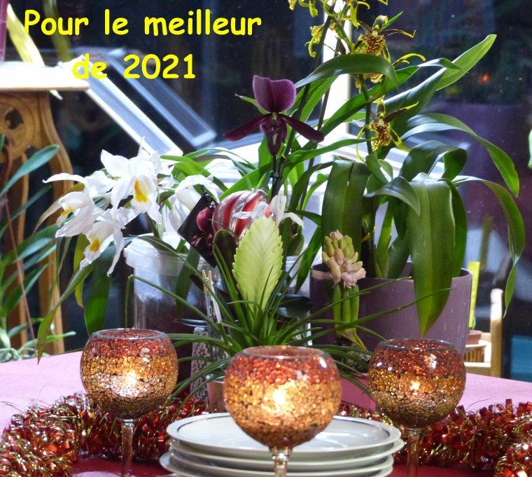 Adieu 2020 et sans regret : Bonne soirée à toutes et tous pour chasser cette mauvaise année