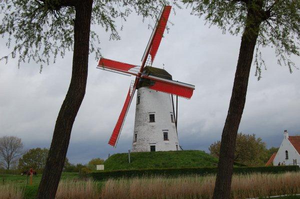 Un moulin à vent  ( nord de la Belgique ) .