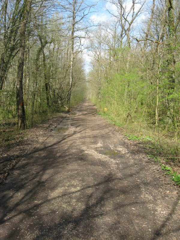 2015 : Domèvre en Haye ...Terminus provisoire de la voie douce ....