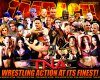 TNA-Wrestling-Federation