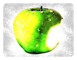 Hùùm, hier j'ai manger une pomme. (8)