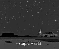 stupid world.