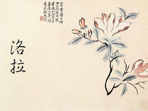 Prénom Chinois (3) ...