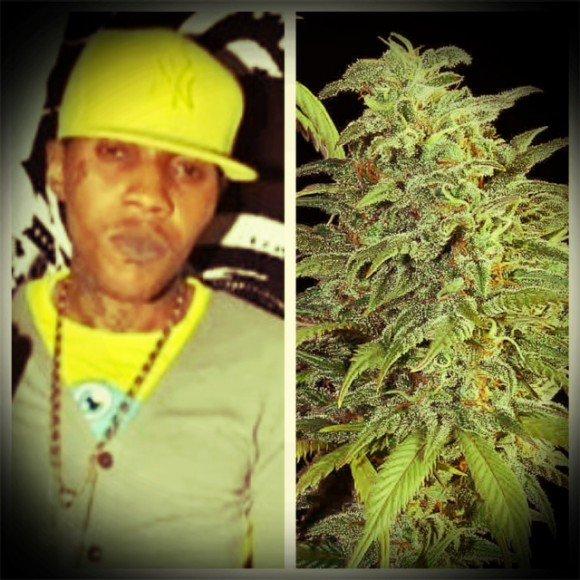 Dj djo-Vybz_Kartel_._Weed_Smokers#Vrs maxi 2013# (2013)