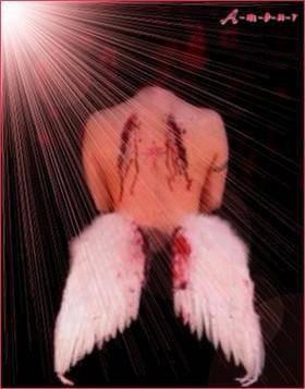Un ange aux ailes brisés :