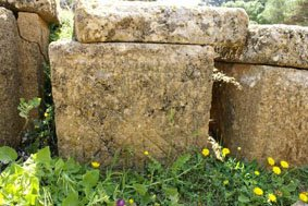 Au printemps Tipasa est habité par les dieux