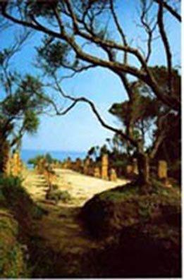 Promenade parmi les ruines