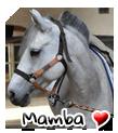 Photo de Mamba--x3