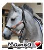 Mamba--x3