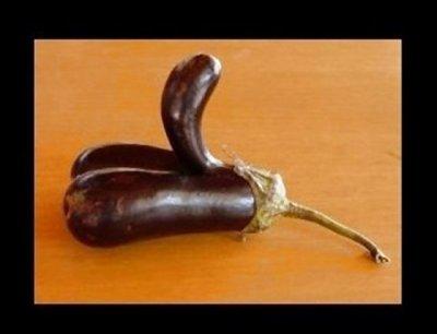 si t'aime les legumes!