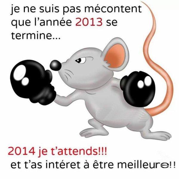 au revoir 2013 et bonjour 2014