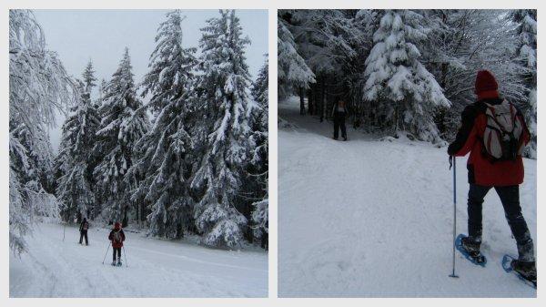 25 janvier, raquettes à rouge gazon dans les Vosges