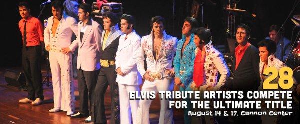 Elvis 2013