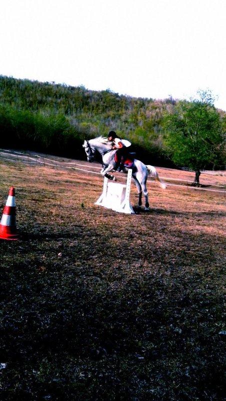 L'équitation le seul sport individuel qui se pratique à deux