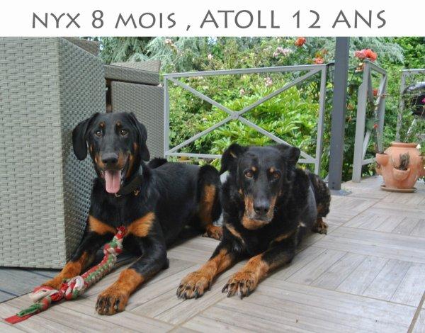 atoll et onyx