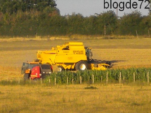 Moisson 2010 chantier n °3