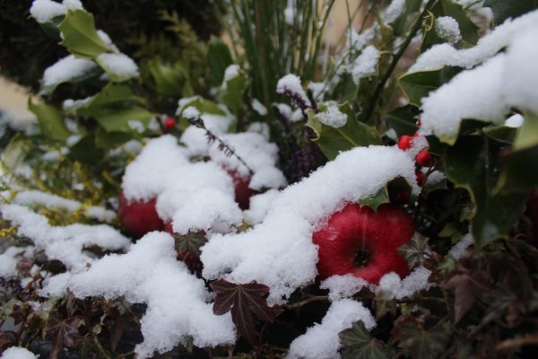 la neige 2017