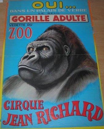 La vedette du zoo :