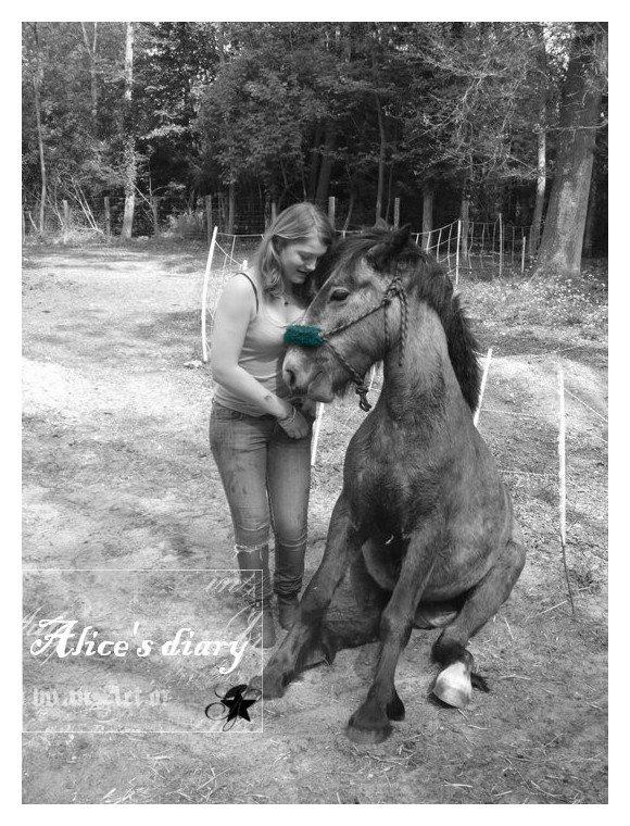Le cheval n'a pas demandé à faire de l'équitation. Le premier devoir du cavalier c'est de lui faire aimer ce boulot.