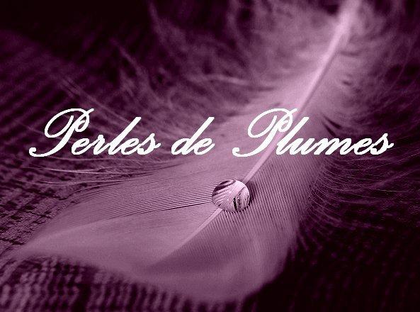 ★ Perles-De-Plumes ★