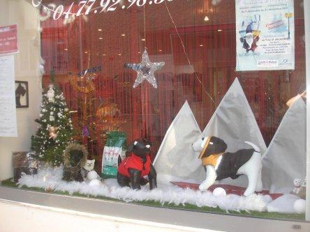 La vitrine d 39 hiver est arriv e salon de toilettage for Salon de toilettage paris