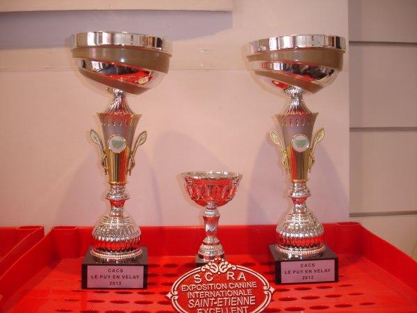 Résultats de l'Expo du Puy en Velay de ce Dimanche 29 Juillet