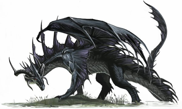 Aeris, le dieu dragon (UNIQUE - OMNISCIENT)