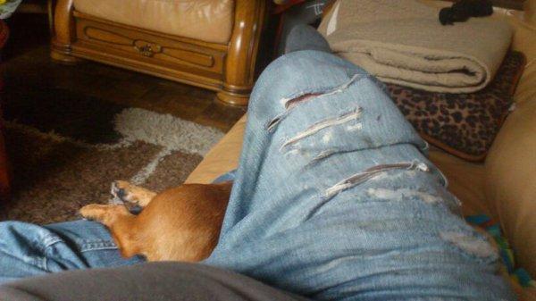 C.est la misère et c.est la mode.mdrrrrr...,,,,,,le Guipsy est casé en dessous de ma jambe lol,,,