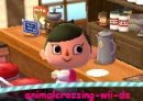 Photo de animalcrossing-wii-ds