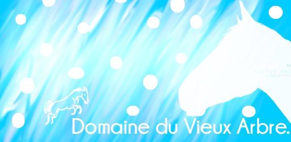 Bienvenue au Domaine Du Vieux Arbre...♥