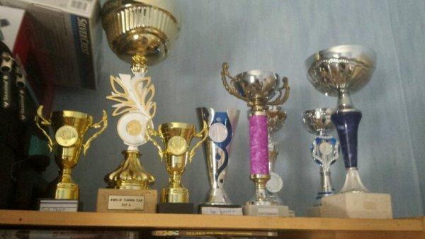 Les trophées que on a gagné sur des meeting
