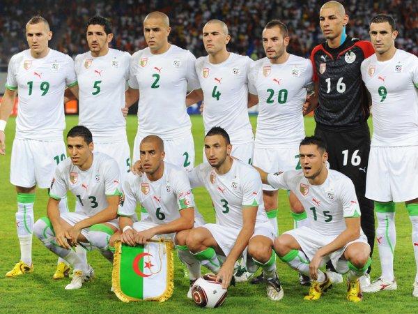 vive algeri