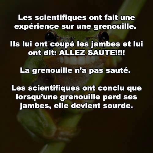 Les scientifiques...