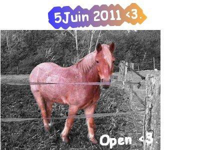 Open ♥