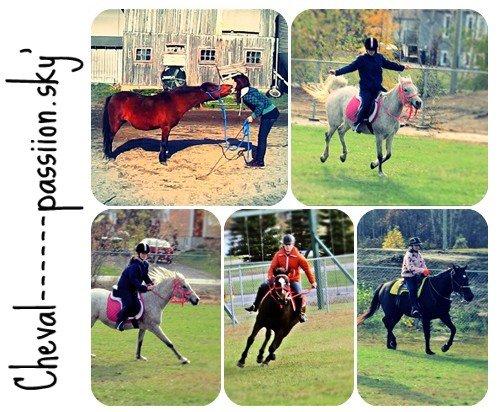 30 octobre 2011 & 05 novembre 2011