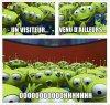 Quand quelqu'un d'une autre classe rentre dans ta classe
