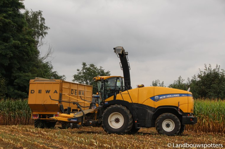 New Holland FR 600 mais hakselen 2016