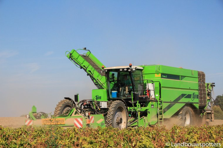 AVR Puma 3+ aardappelen rooien 2016 - Cattebeke