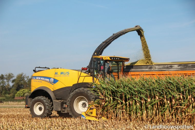 Mais hakselen 2016 - New Holland FR 780 Forage Cruiser