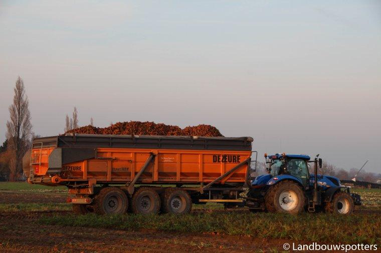 DEWULF KWATRO 2016 wortelen 2016 - Arrachage des carottes 2016